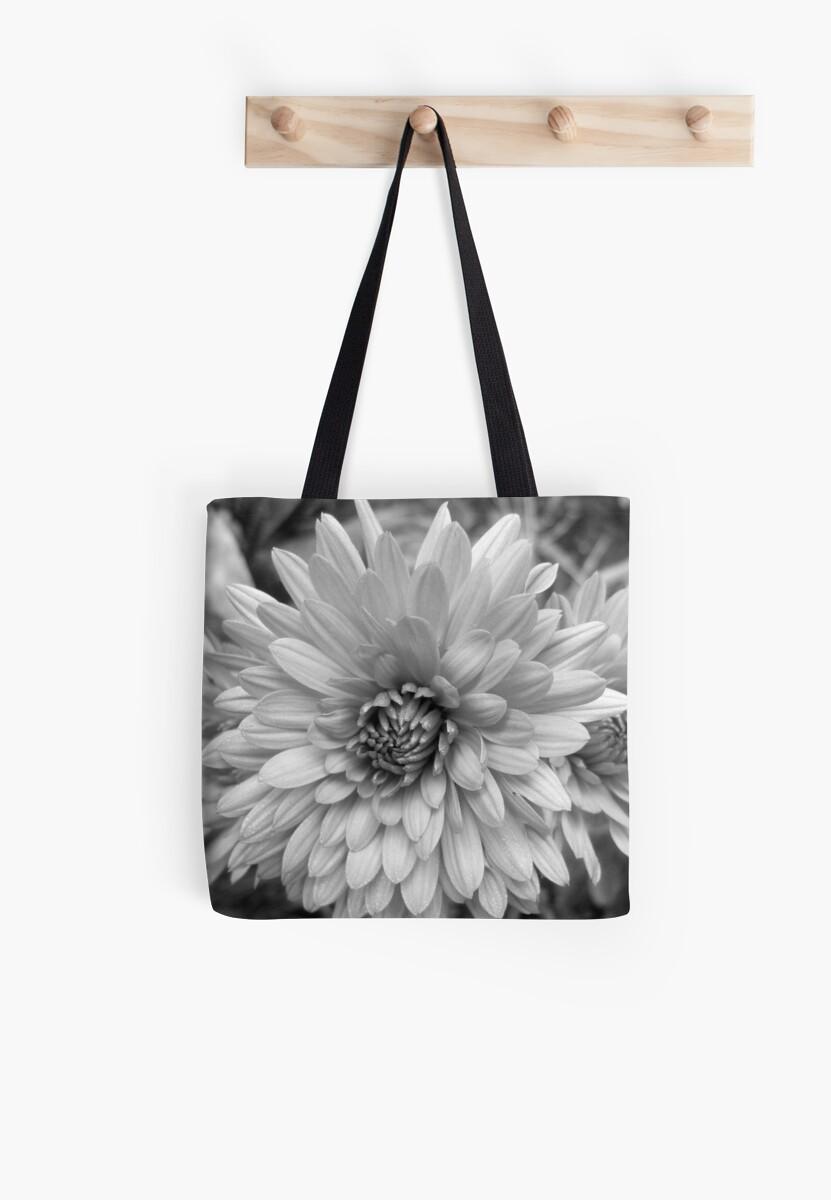 Chrysanthemum by Antoinette B