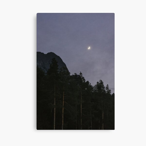 Lavander Night | Nature and Landscape Photography Canvas Print
