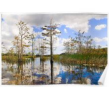 Grassy Waters Poster