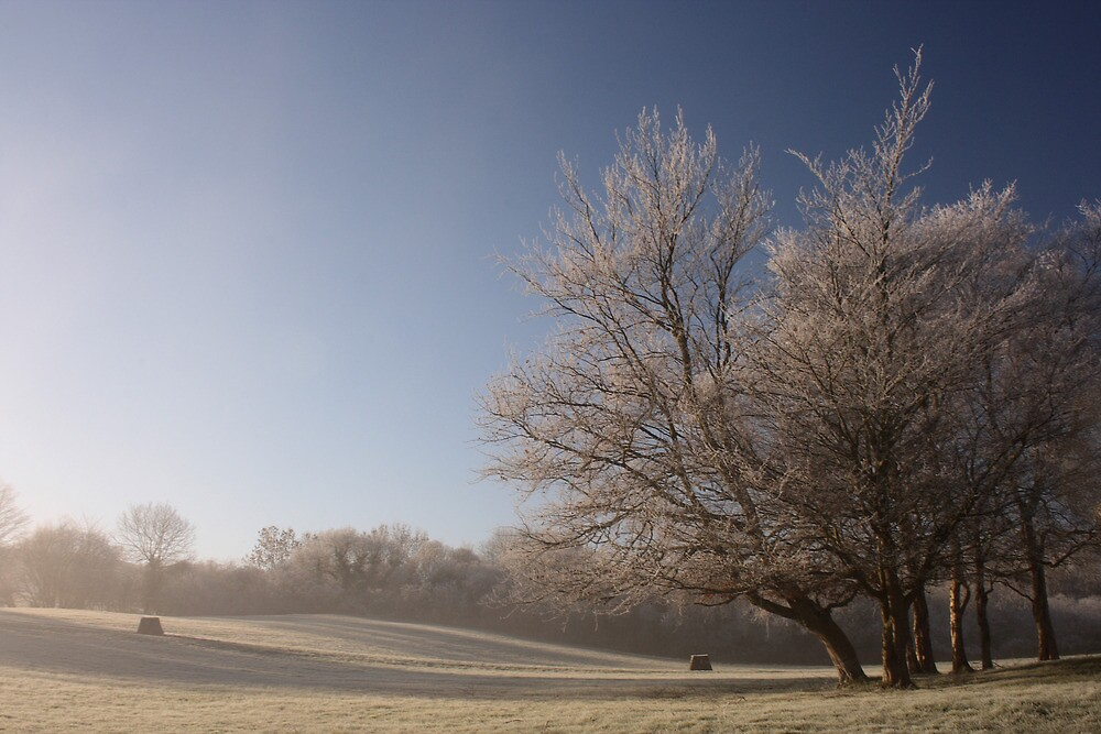 Frosted by Adrian McGlynn