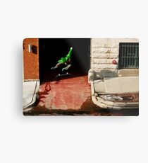 Neen Williams- Kick Flip- photo Ely Phillips Metal Print