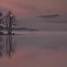 Quiet Calm on Ullswater by Brian Kerr
