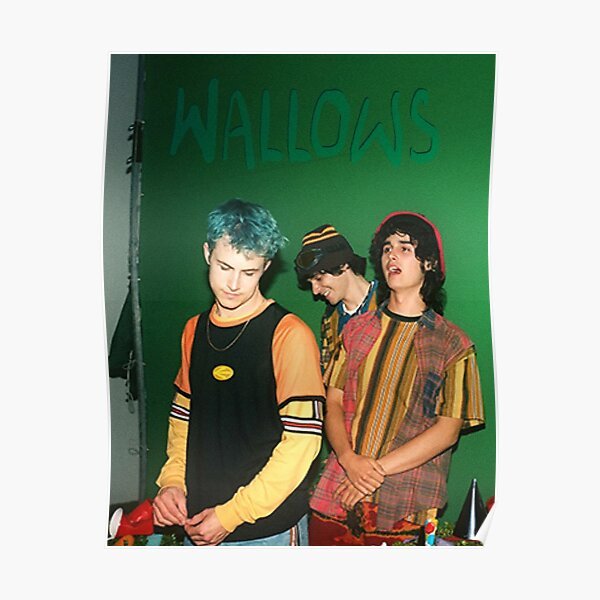 Wallows Punk Ok Poster