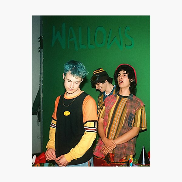 Wallows Punk Ok Photographic Print