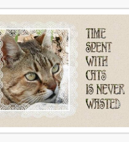 Time Spent With Cats Is Never Wasted Greeting Card Sticker