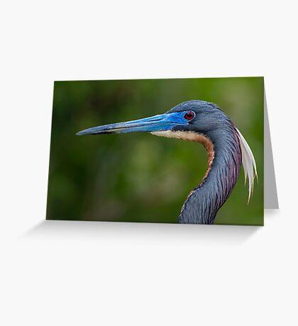 Tricolored Profile  Greeting Card