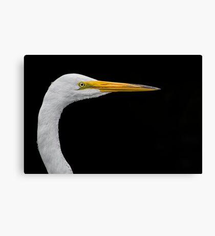 White on black Egret Canvas Print