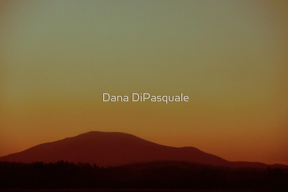 I Will Fly by Dana DiPasquale