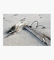 Wire & Sand Photographic Print