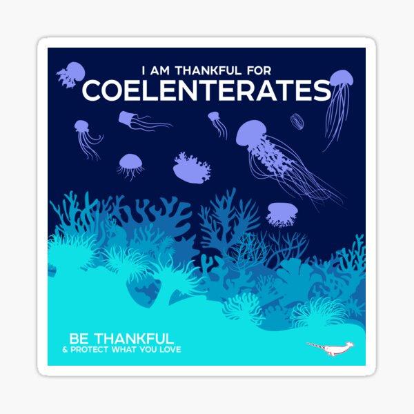 I Am Thankful For Coelenterates Sticker