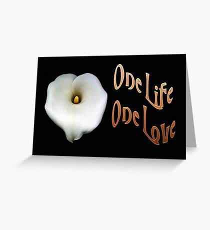 """Calla Lily Isolated on Black """"One Life, One Love"""" Greeting Greeting Card"""
