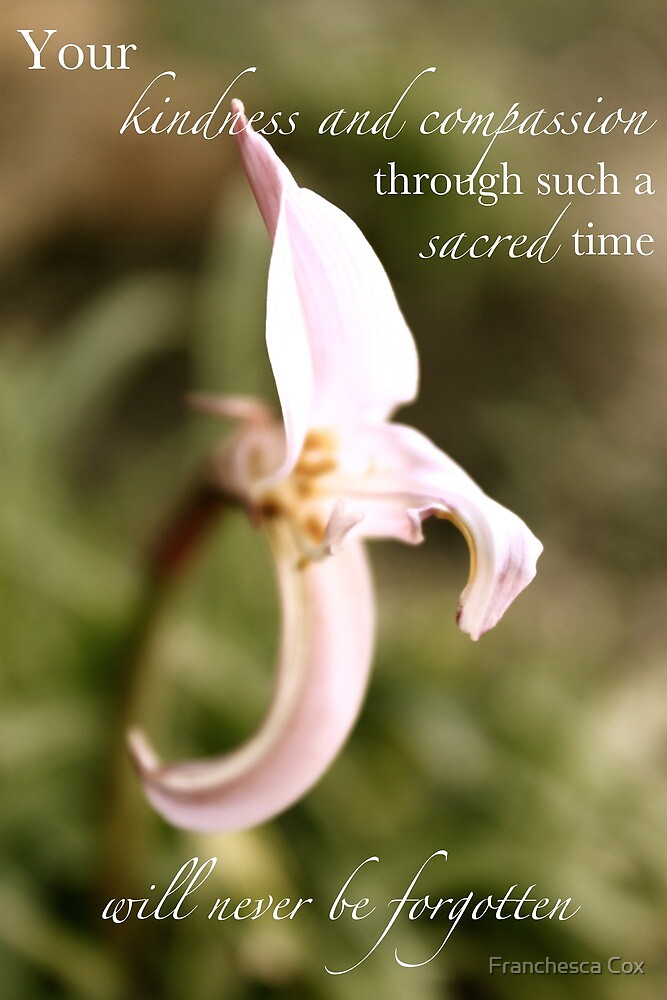 For Hospital Staff or Midwives Caring for Family Enduring the Loss of a Child by Franchesca Cox