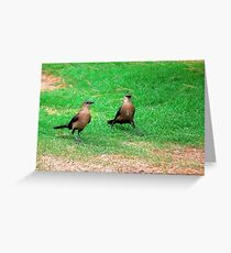 Wacky Grackles Walking in the Park Greeting Card