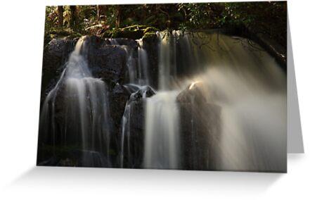 upper lilydale falls, northeast tasmania by tim buckley   bodhiimages