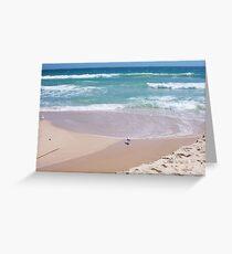 Gulls In Water Three - 20 10 12 Greeting Card