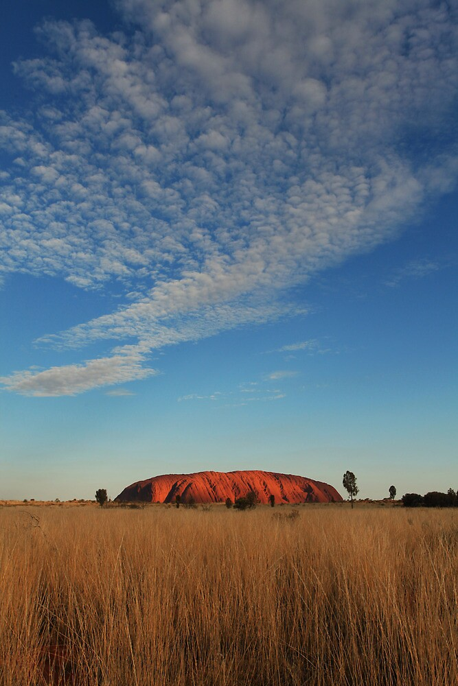 In a different light by Ursula Rodgers
