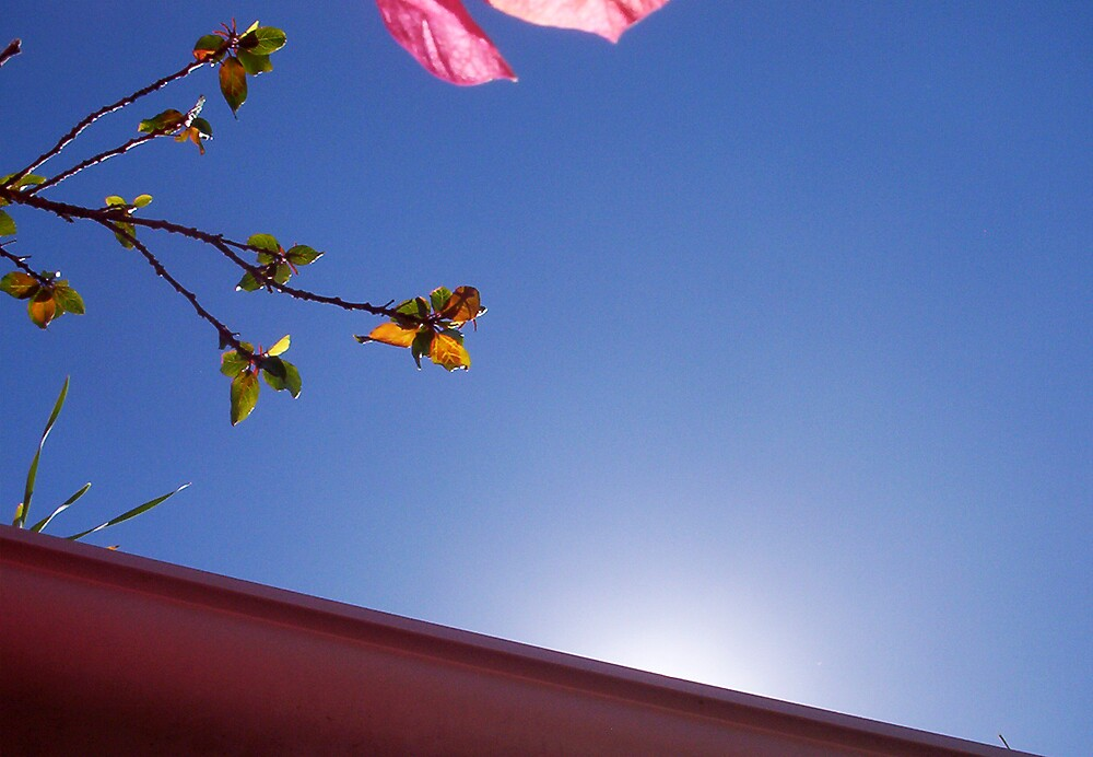 Sun Over The Gutter - 23 10 12 by Robert Phillips
