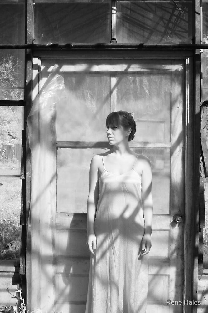 Standing at the Door by Rene Hales