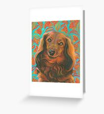 Loverly Long-haired Dachshund  Greeting Card