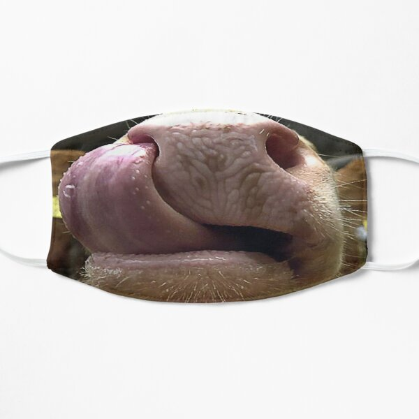 Cow licking Lover Funny Face Cute Animals Gifts showing close nose and Tongue out fitting your face Flat Mask
