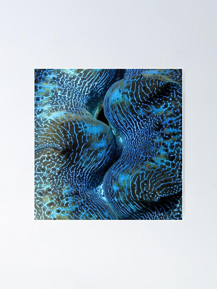 Alternate view of Blue Matrix Poster