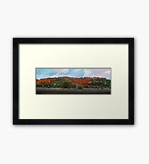 Autumn Colors Panoramic Framed Print