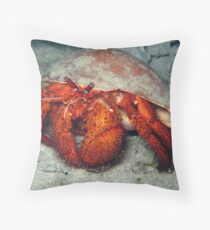 Hermit in Melo Throw Pillow