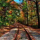 Down the track by kentuckyblueman