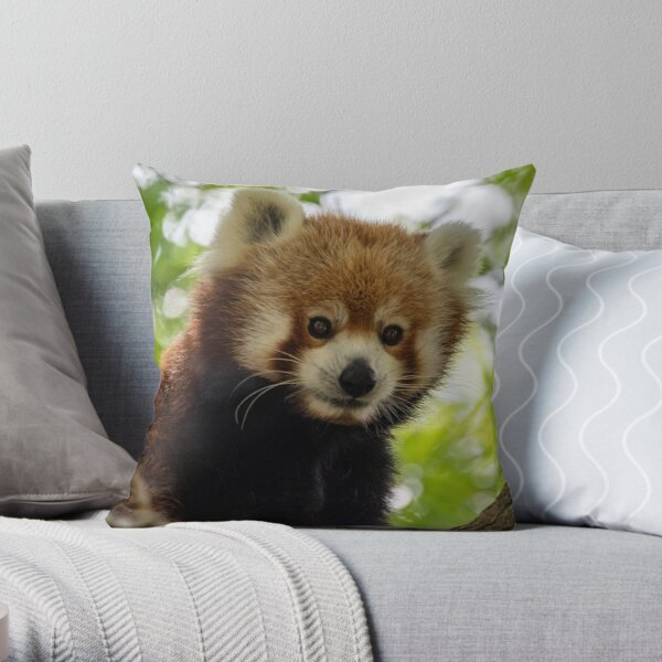 Close up photo of cute red panda sitting on branch in tree Throw Pillow