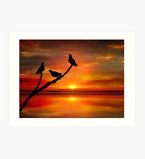 Birds at Sunset point-2 Art Print