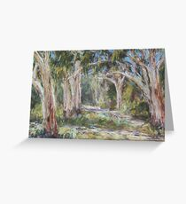 Lake Innes Nature Reserve 2 - plein air Greeting Card
