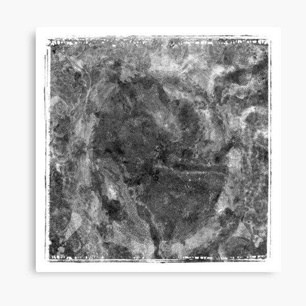 The Atlas of Dreams - Plate 24 (b&w) Canvas Print