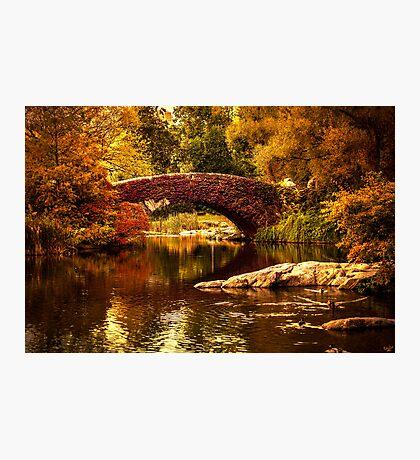 The Gapstow Bridge Photographic Print