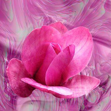 Magnolia Vulcan by DALock