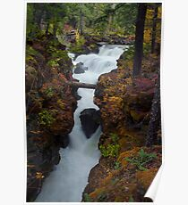Rogue River Gorge #2 Poster