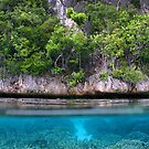 Shoreline at Pulau Pulau Wofo by Reef Ecoimages