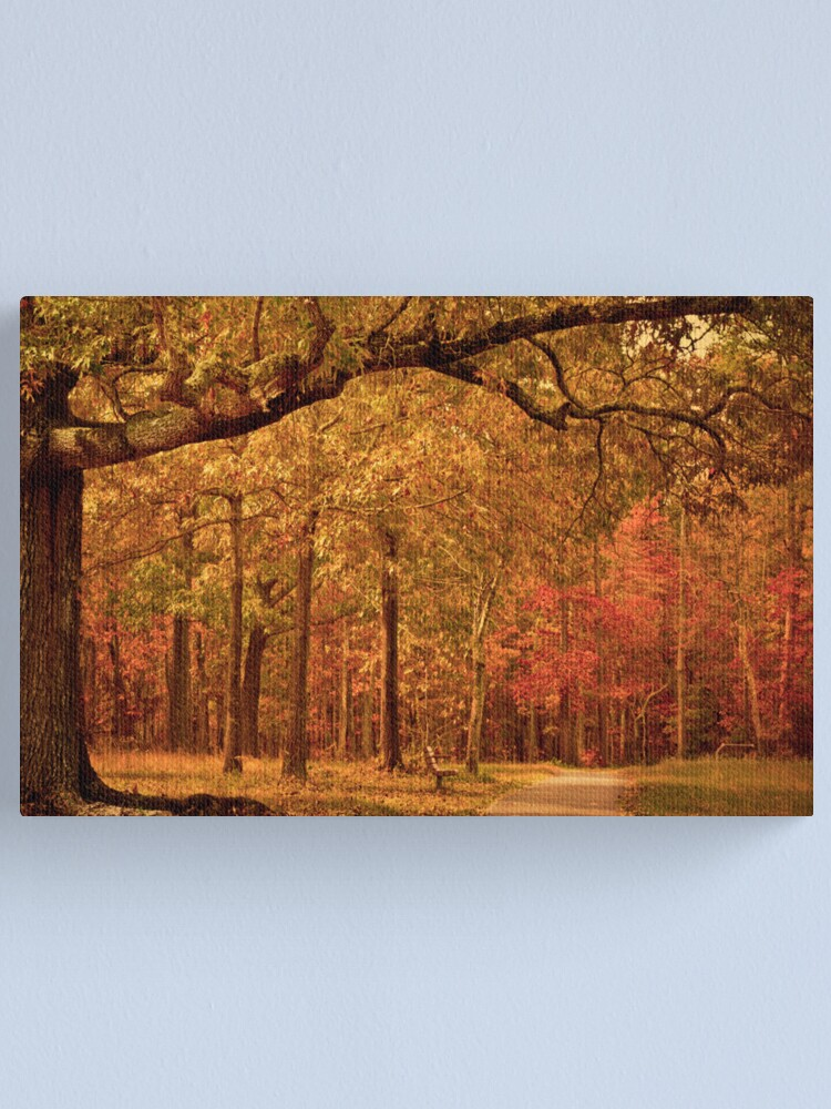 Alternate view of Amber Afternoon Canvas Print