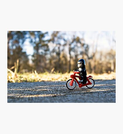 Gorillas bike, too Photographic Print