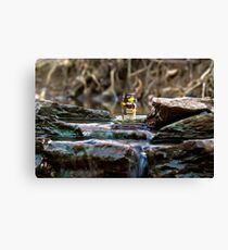 Cross the streams Canvas Print