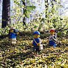 Explorers by Dan Phelps