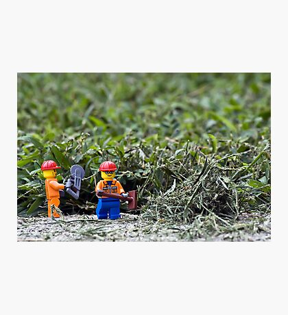 Yard Work Photographic Print