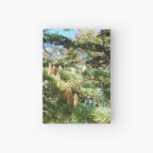 Parliament of Owls Tree  Hardcover Journal