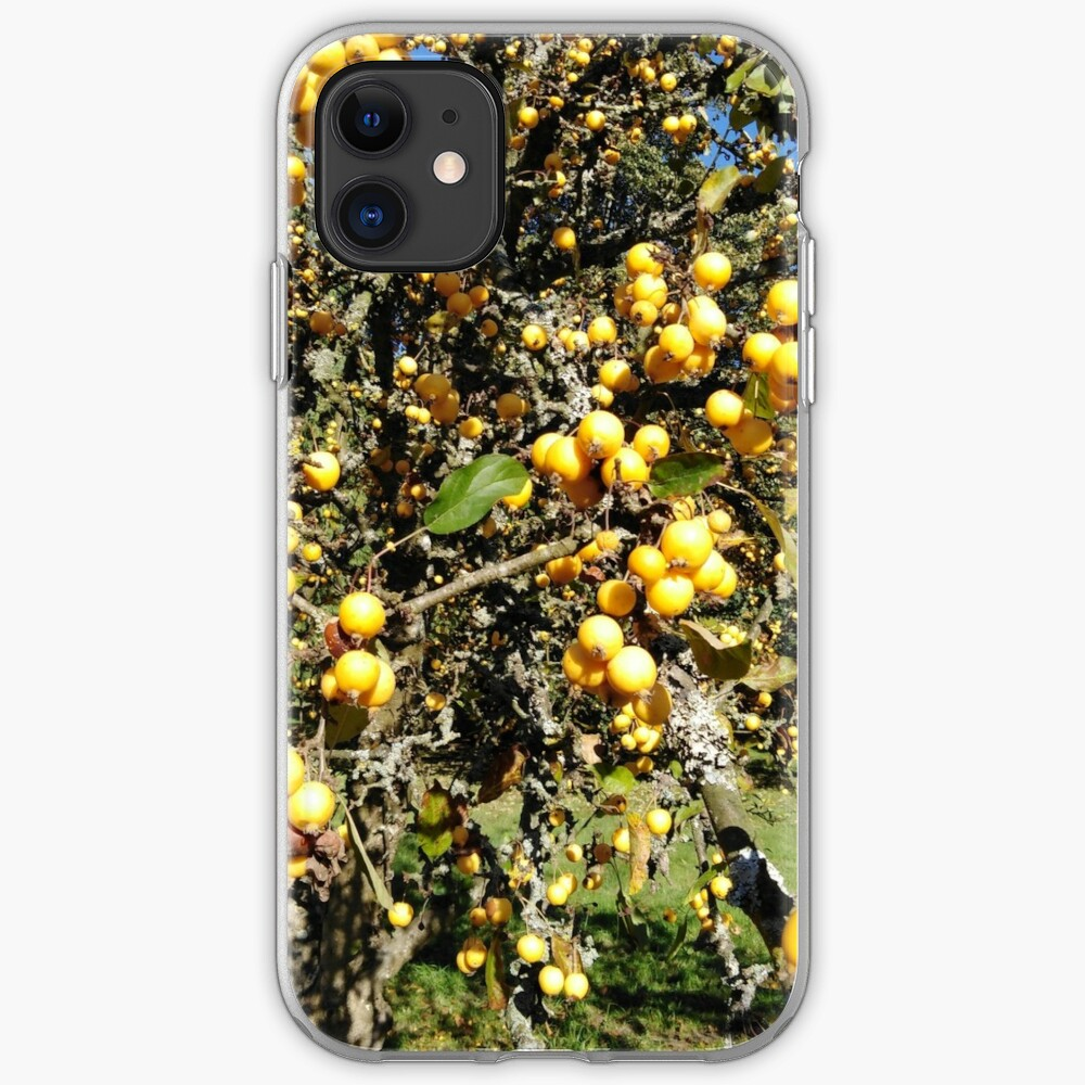 Autumninal Crab Apple Glut 2 iPhone Case & Cover
