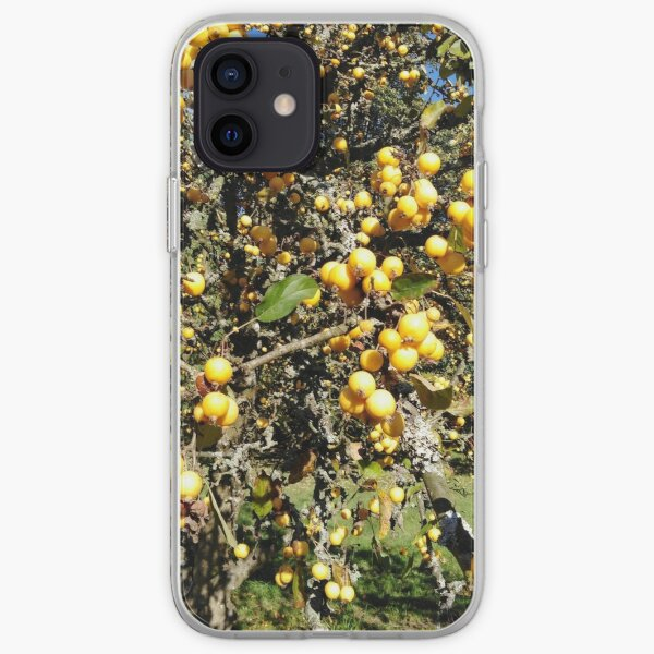 Autumninal Crab Apple Glut 2 iPhone Soft Case