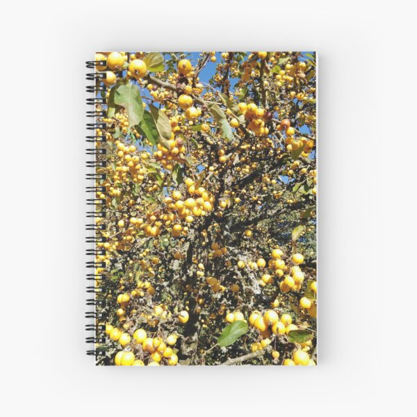 Autumnal Crab Apple  Spiral Notebook