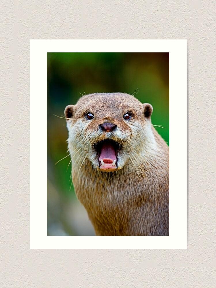Alternate view of Otter Art Print