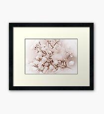 Grass Flower Framed Print