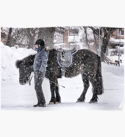 Snowy horse Poster