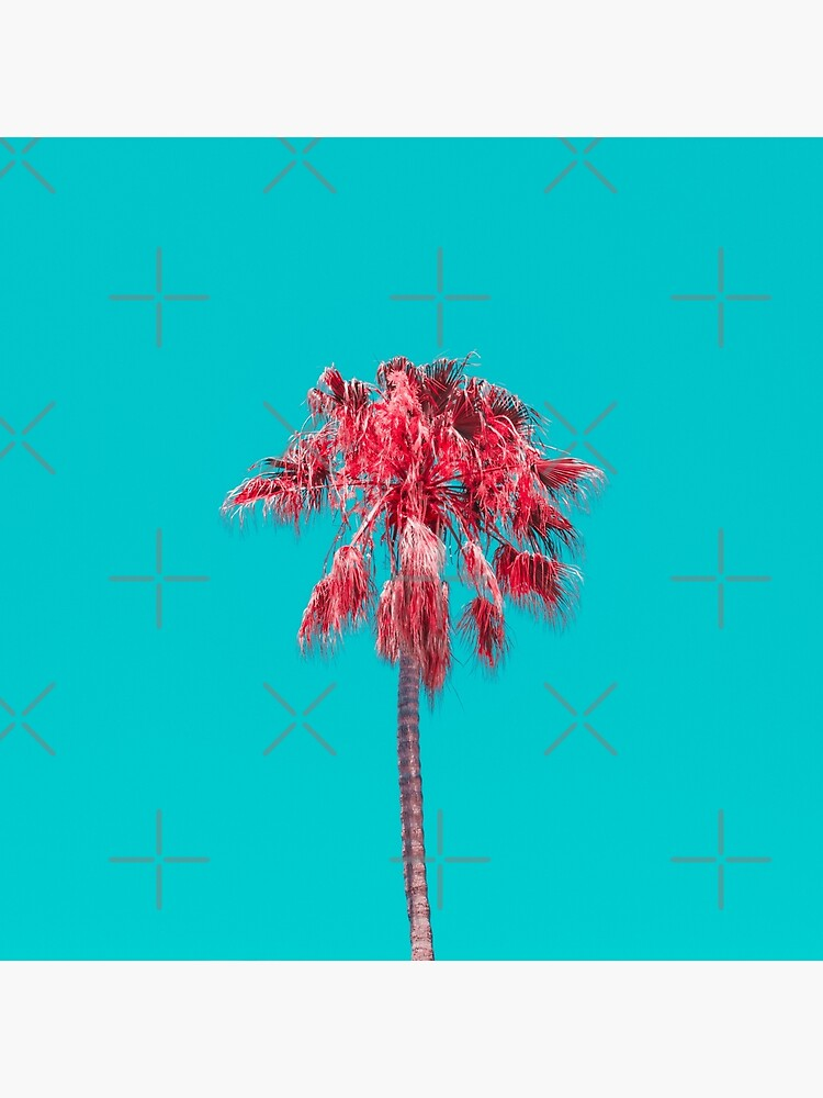 Palm Tree by KatyaHavok