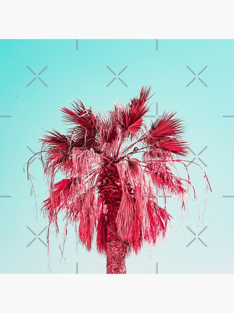 Pink Palm by KatyaHavok